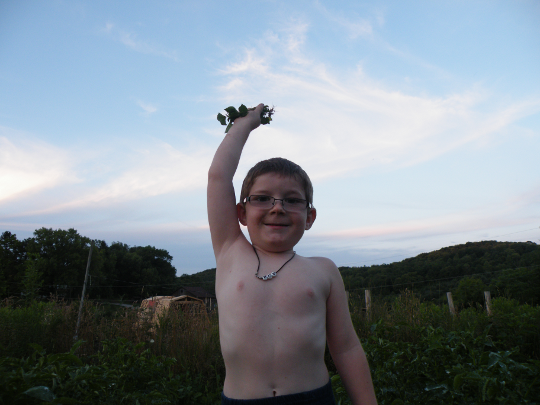 Master Mini- Gardener - Destroyer of Weeds