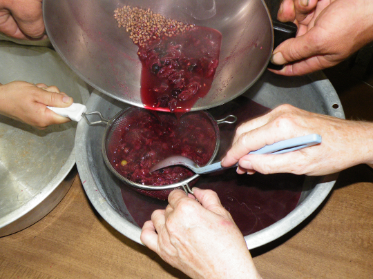 Straining out the Pulp and Seeds