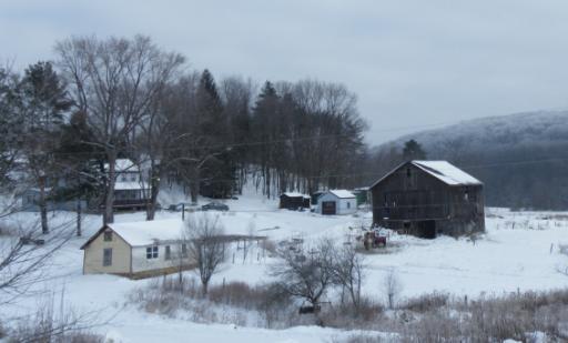A Frosty January Morning.