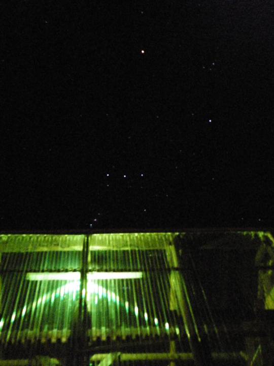 Orion Over the Greenhouse