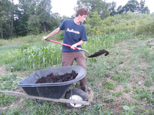Spreading Compost