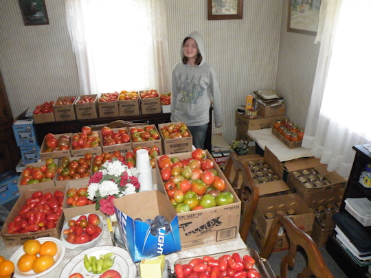 Jessica Looking at a Lot of Tomatoes